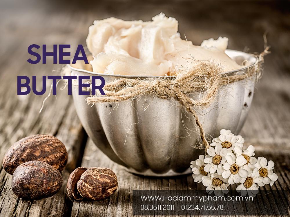 Bơ shea (Shea butter) mỹ phẩm từ thiên nhiên dành cho da