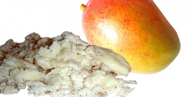 Bơ Xoài (Mango Butter) Nguyên Chất Giá Rẻ