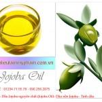 Dầu Jojoba - Dầu Jojoba nguyên chất (Jojoba Oil)