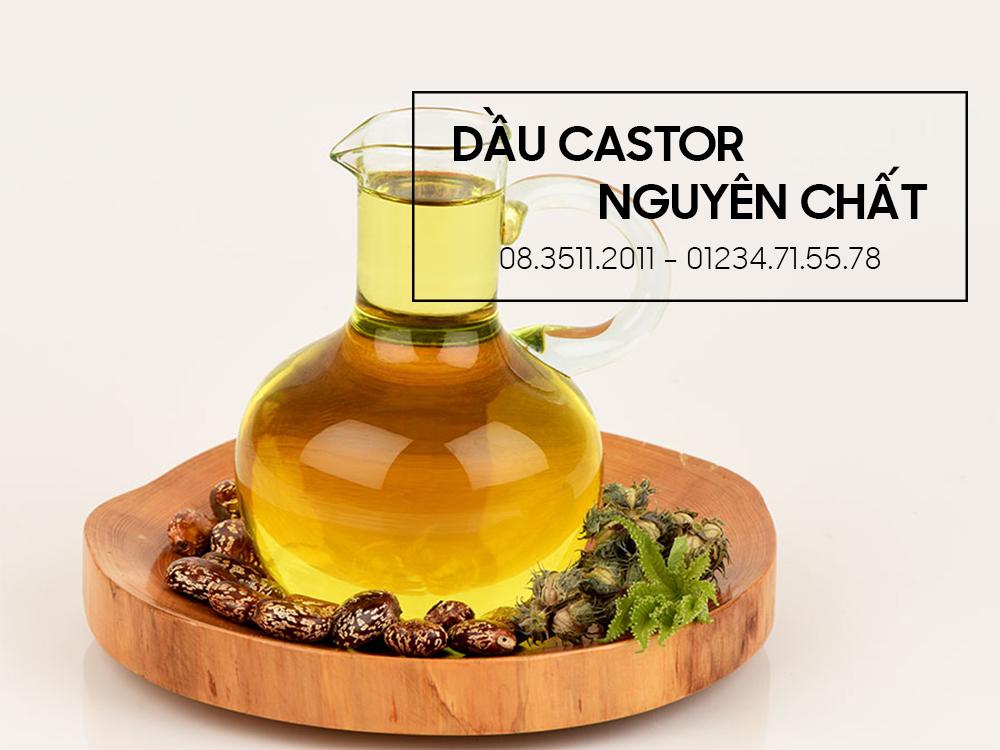 Dầu castor – Nguyên liệu làm mỹ phẩm handmade