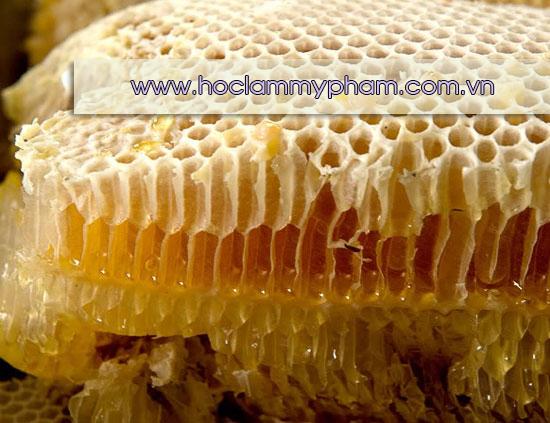 Mật ong nguyên chất - Mật ong rừng nguyên chất