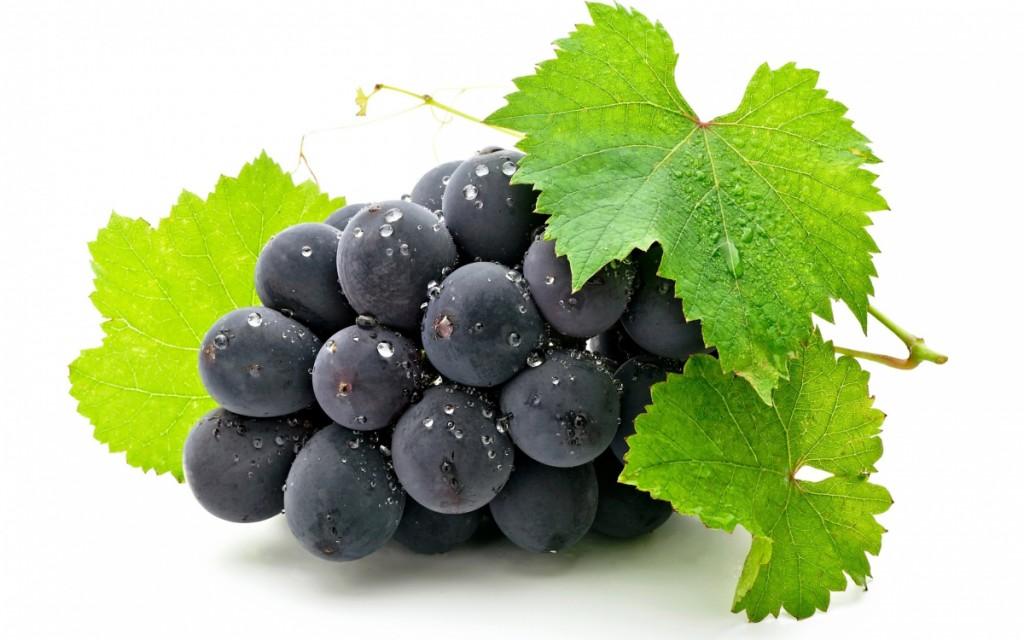 Dầu Hạt Nho Grape seed oil - Tinh dầu thiên nhiên