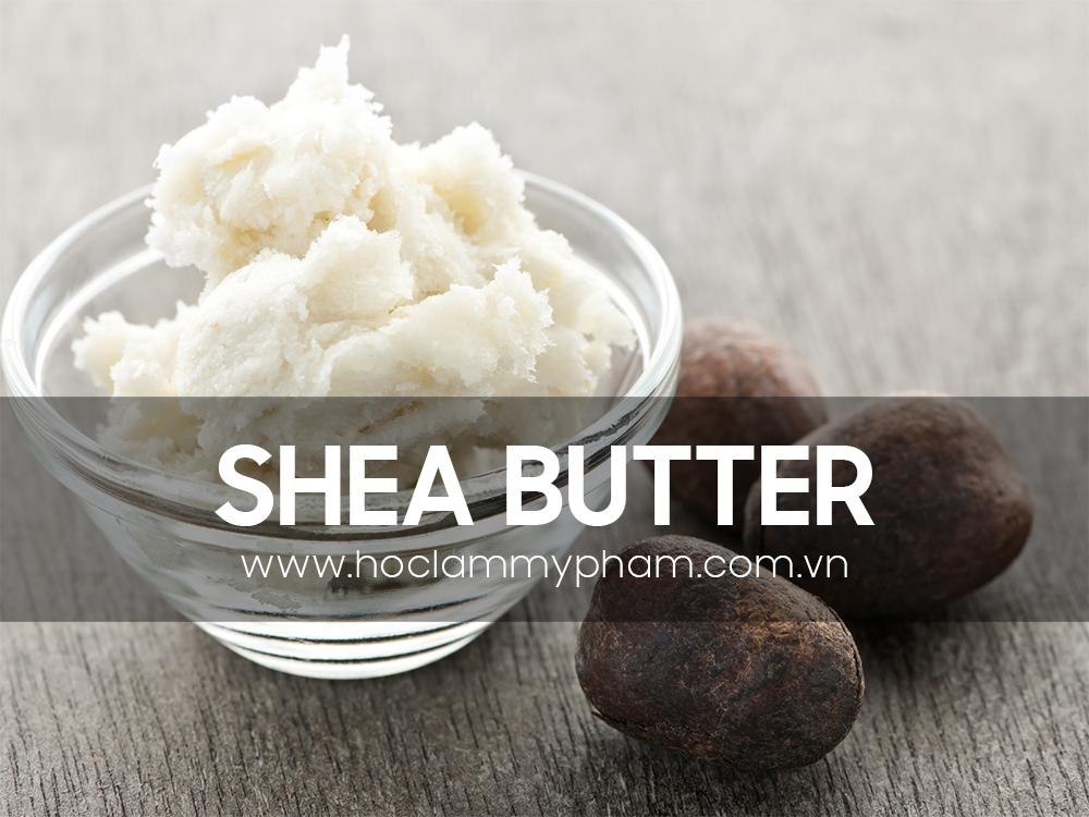 bơ shea - shea butter