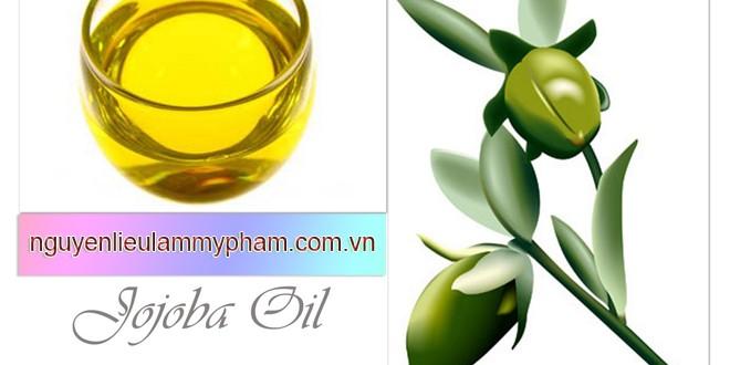 Dầu Jojoba – Dầu Jojoba nguyên chất (Jojoba Oil) – Dầu nền Jojoba – Tinh dầu thiên nhiên